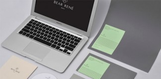 bear rene - identity by marque