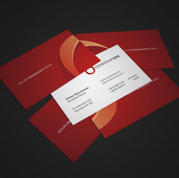 ConsorciumSTS Identity Design - Kreujemy.to