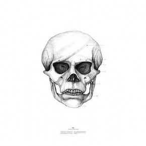 Creative Popular Skull Illustrations by Istvan Laszlo