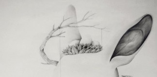Bird and Tree - Roby Dwi Antono Illustration