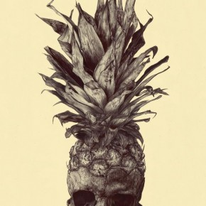 Skull-Pineapple Drawing by Rémi Andron