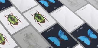 FABRIANO Paper Stocks - Design by SEA