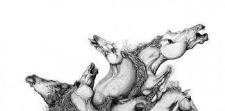 Illustration by Sam Brookes