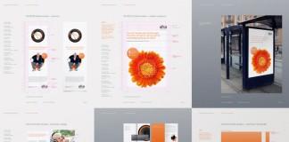 Alka Insurance - branding material