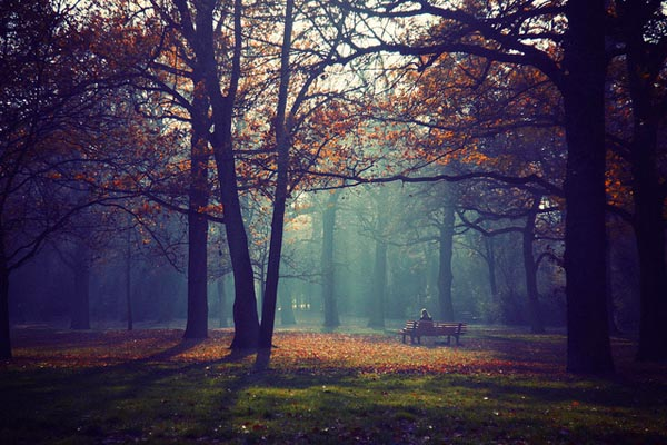 Autumn Photography by Lukas Kozmus