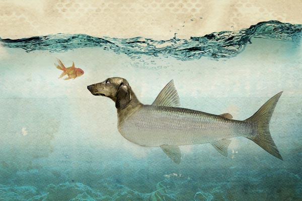 Surreal Mixed Media Fine Art Print by vin zzep