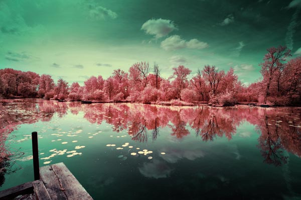 Infrared Landscape Photography of a Lake, Trees and Sky by David Keochkerian