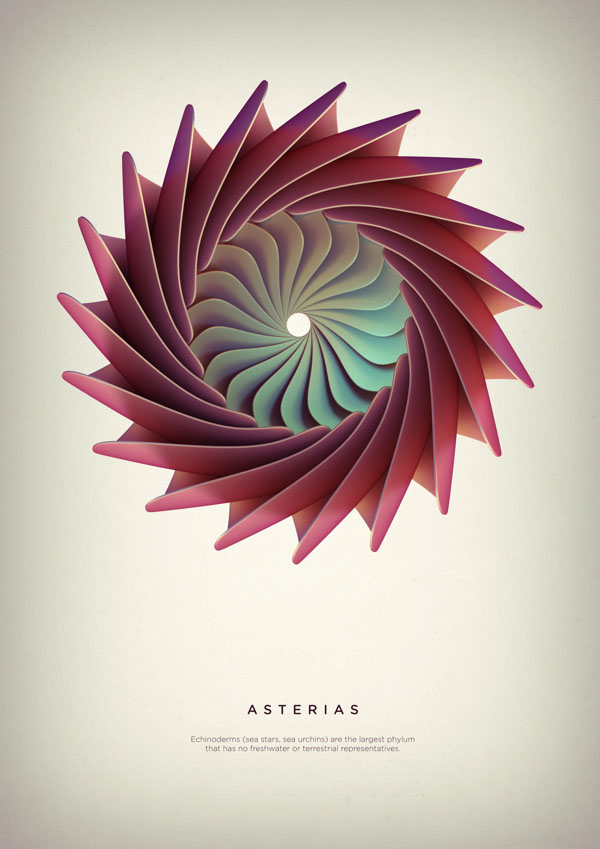 Asterias - Digital Art by Črtomir Just
