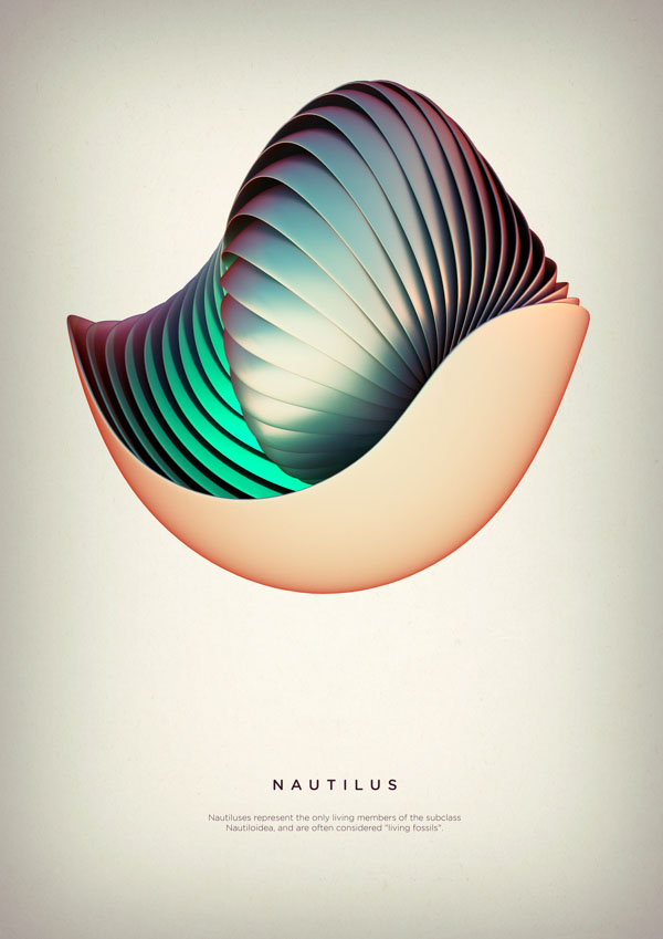 Nautilus - Digital Art by Črtomir Just