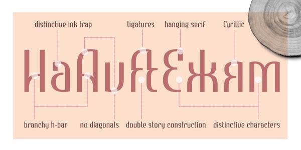 Estimo Typeface