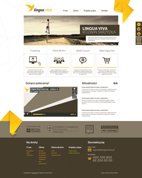 Lingua Viva - Language-  Web Design Concept by Necon