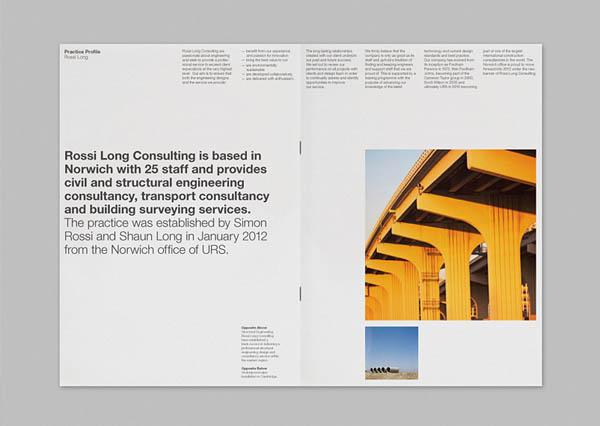 Rossi Long Consulting - Brochure Design by Matthew Hancock