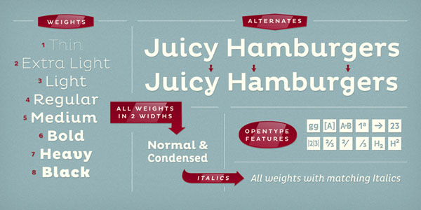 Pluto Font Family by Hannes von Döhren - Typefaces and Weights