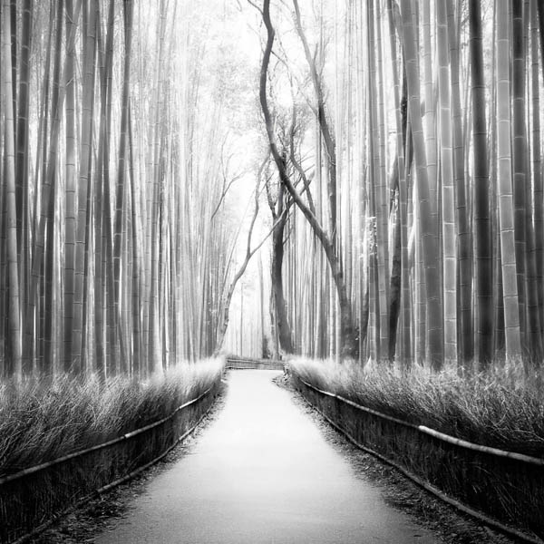 HONSHŪ - Black and White Travel Photography by Peter Zeglis