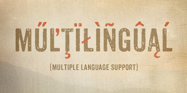 Anodyne - Multiple Language Support
