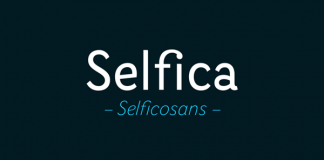 Selfica - Sans Serif Type Family by Nootype