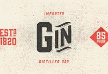 Gin - Vintage Display Typeface by Hold Fast Foundry