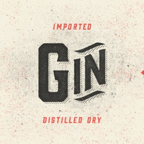 Gin - Vintage Display Font Family by Hold Fast Foundry