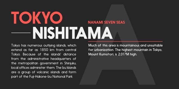 Nanami Type Family