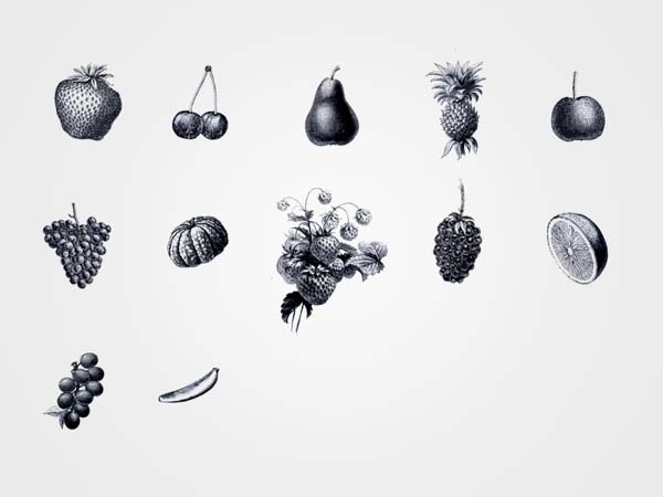 The Living Co. - Organic Store - Fruit Illustrations by Big Horror Athens