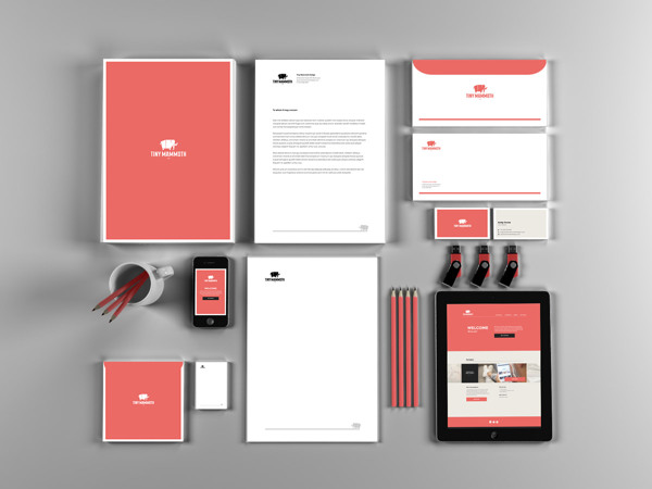 Tiny Mammoth - Design Studio Brand Identity