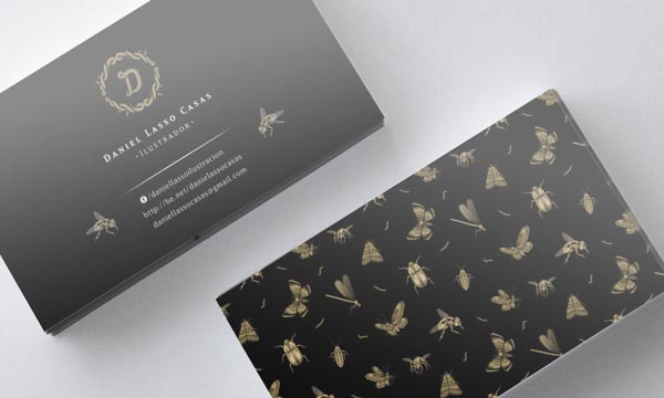 Business Cards of Daniel Lasso Casas
