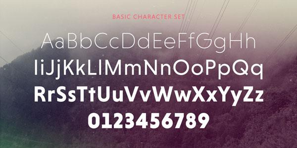 Niveau Grotesk - Basic Character Set