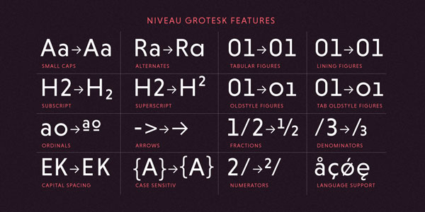 Niveau Grotesk Features