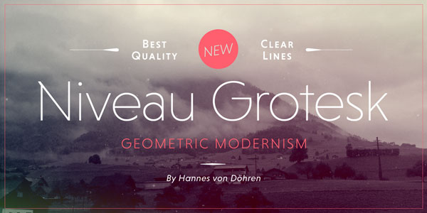 Niveau Grotesk Font Family by HVD Fonts