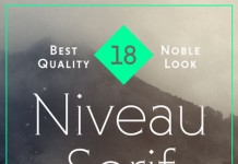 Niveau Serif Font Family by HVD Fonts