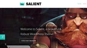 Salient - Responsive Wordpress Portfolio and Blog Template by ThemeNectar