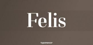 Felis - Serif Typeface by Typomancer