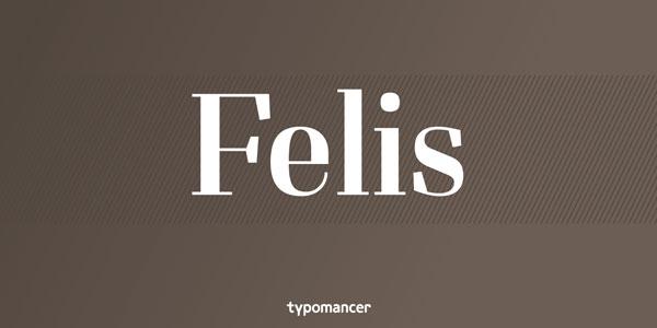 Felis - Slab Serif Typeface by Typomancer