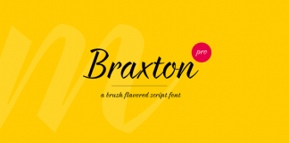 Braxton - script font family by Fontfabric