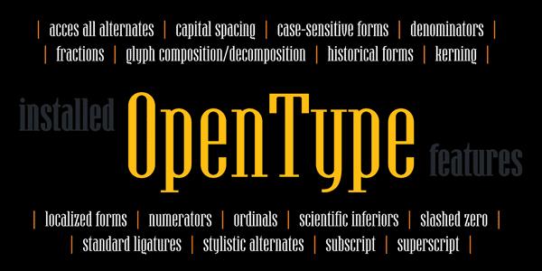 Hamerslag - OpenType features