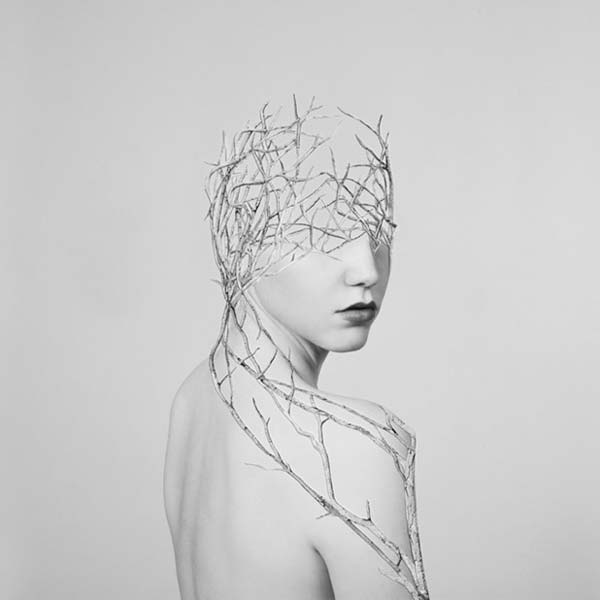 Simulations - Photographic Collage by Alexandra Bellissimo
