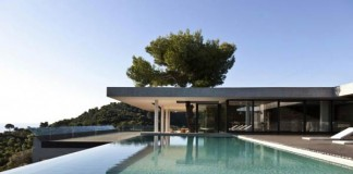 Endless Pool of the Plane House by K Studio