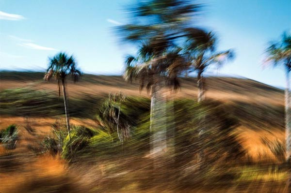 Motion Blur Photography by Patricia Gouvêa