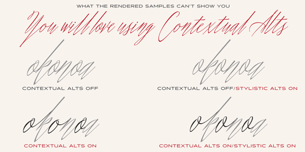 Shameless Script Font Alternates