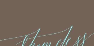 Shameless Script Font by Positype
