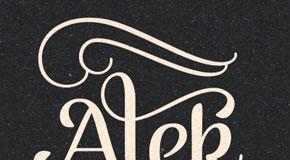 Alek playful script font family by Fenotype