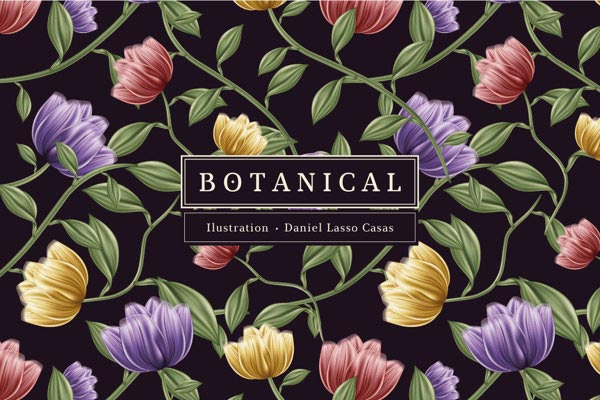 Botanical – Branding and Illustration by Daniel Lasso Casas