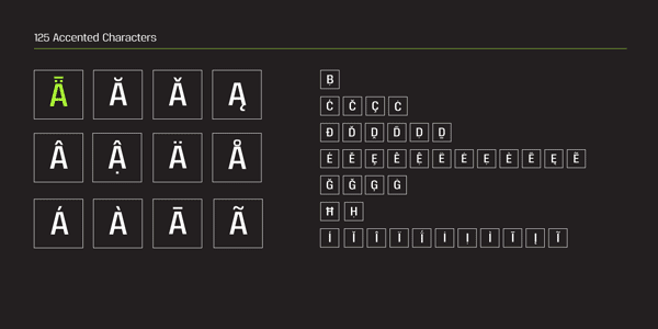Reznik Font - 125 Accented Characters