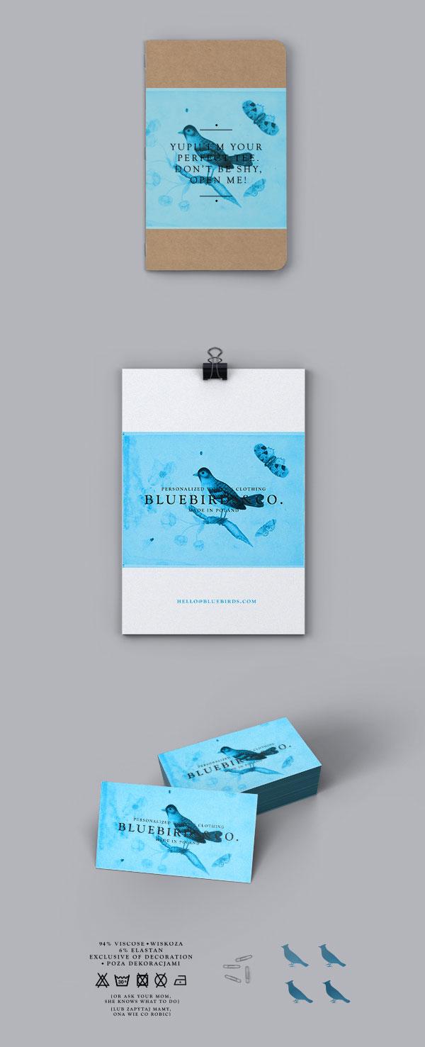Bluebirds&Co. Branding by Krzysztof Zdunkiewicz