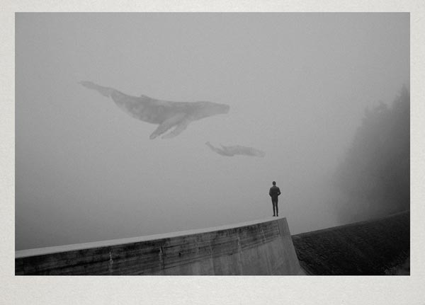 Photographic Artworks by Martin Vlach