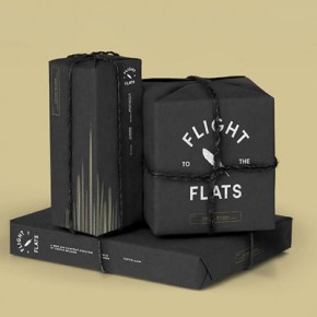 Flight To The Flats - Contest Identity by Wedge & Lever