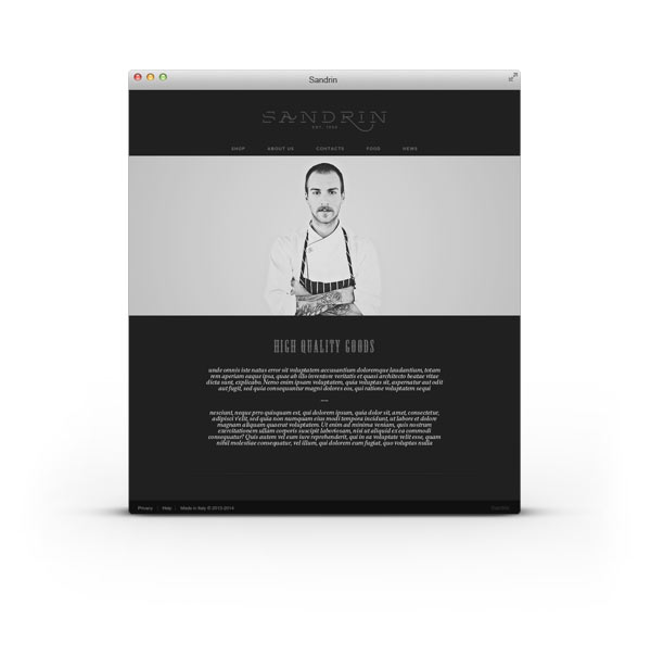 Sandrin Website by Elia Pirazzo