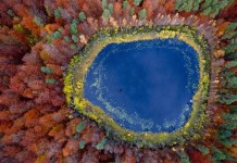 Polish Autumn - Aerial Photography by Kacper Kowalski