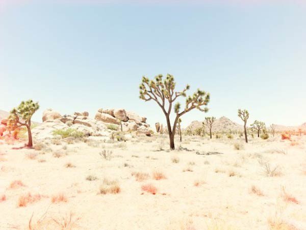 Personal Photography by Nick Meek