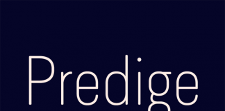 Predige Rounded by Type Dynamic